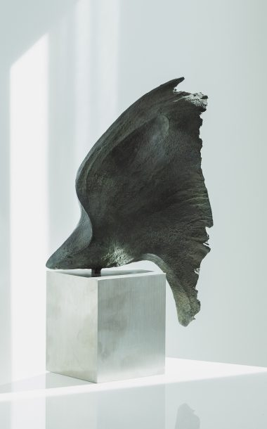 Wing 1 bronze sculpture by Barrell